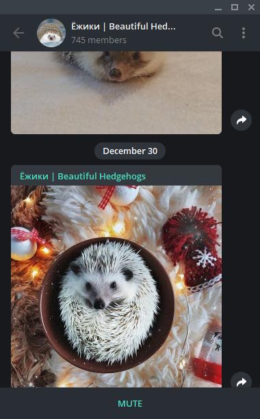 Screenshot example of Telegram Messenger channels.