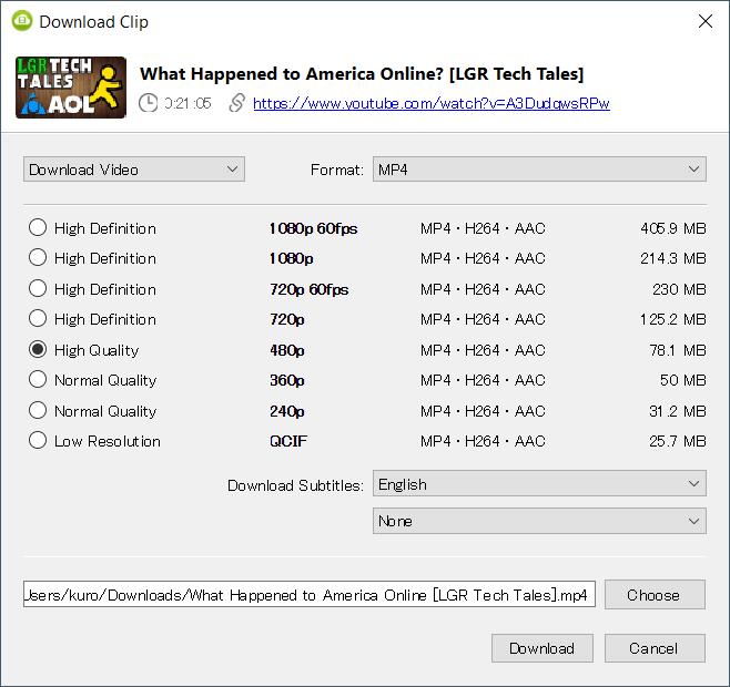 4k Video Downloader options